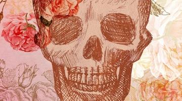 Imagem 6 do post Ilustrações para Grife Feminina