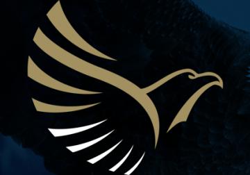 Criação de Logotipo para Consultoria