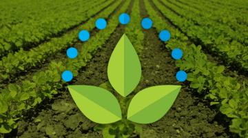 Imagem 2 do post Logotipo Empresa Irrigação