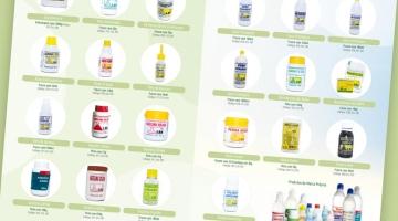 Imagem 3 do post Criação Catálogo de Produtos Indústria Farmacêutica