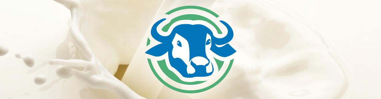 Criação Logotipo Mozarella de Búfala